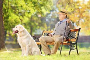 Chcesz długo żyć? Kup sobie psa